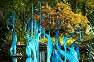 Works in glass by Dale Chihuly at the Dallas Arboretum
